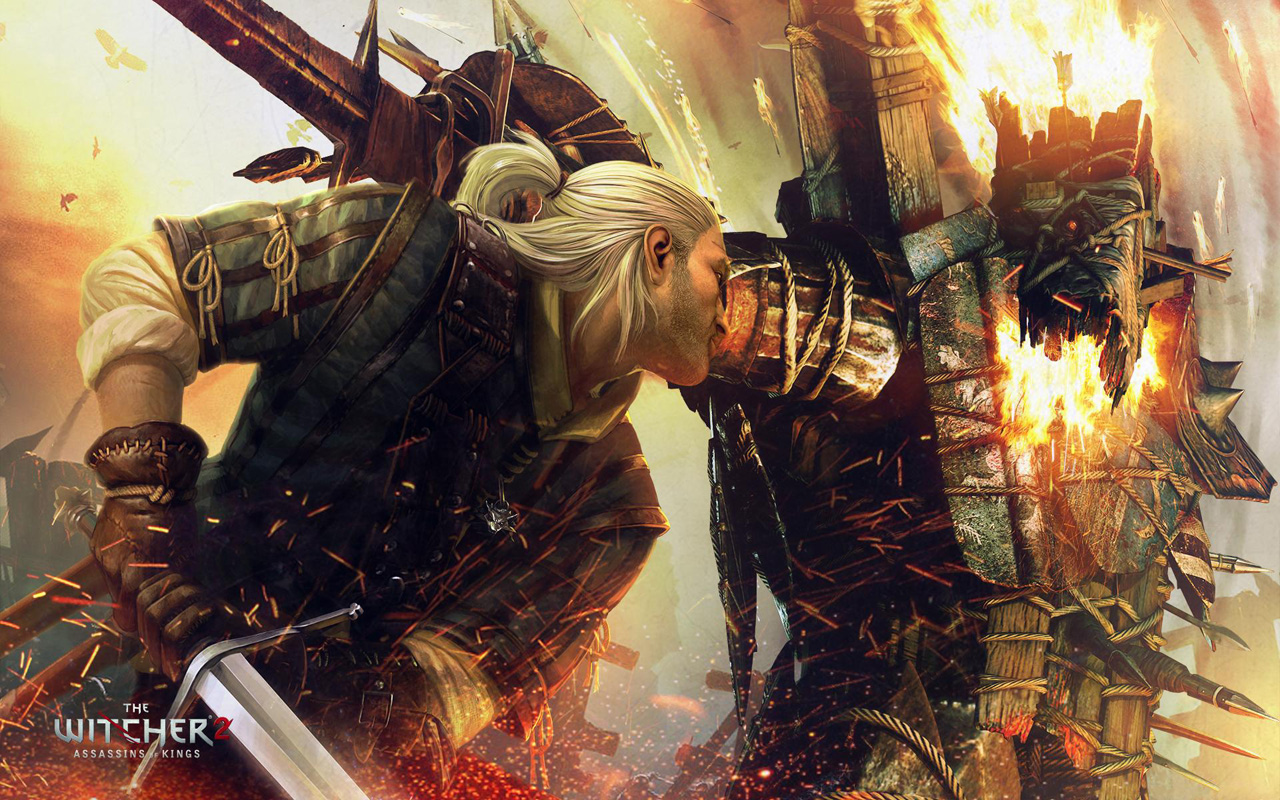 The Witcher 2 Assassins of Kings - VGProfessional Review (1)